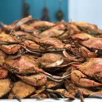 Diamond Shoals Restaurant, fresh local blue crabs!