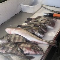 Diamond Shoals Restaurant, Fresh Catch at Diamond Shoals Restaurant and Seafood Market