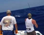 Sportfishing With Bite Me Sportfishing - Bite Me Sportfishing Charters