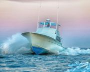 Offshore Deep Sea Fishing - Tuna Duck Sportfishing