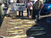 Calypso Sportfishing Charters, May 8th-