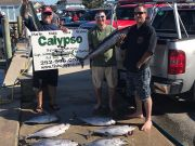 Calypso Sportfishing Charters, Variety of Meat!