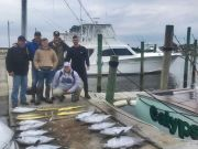Calypso Sportfishing Charters, Good to Be Back!