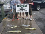 Calypso Sportfishing Charters, Getting better