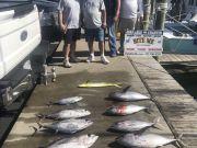Bite Me Sportfishing Charters, The Bob's!  Tuna Dolphin and a Blue Marlin sighting!