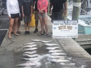 Bite Me Sportfishing Charters, Deep Dropin