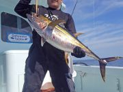 Tuna Duck Sportfishing, Yellowfin Tuna On Topwater