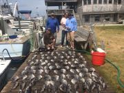 Oden's Dock, Little Clam & the Trigger Fish!