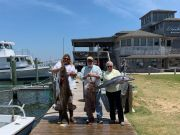 Oden's Dock, Cobia, grouper, wahoo!