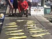 Bite Me Sportfishing Charters, Adam and friends