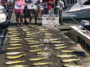 Bite Me Sportfishing Charters, Triple Header!