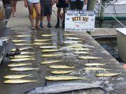 Bite Me Sportfishing Charters, Wahoo!  Dolphin!