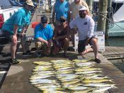Bite Me Sportfishing Charters, Dolphin (not Mahi-Mahi)