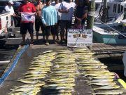 Bite Me Sportfishing Charters, River of Mahi!