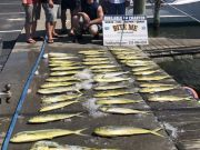 Bite Me Sportfishing Charters, pretty day good fishing!