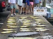 Bite Me Sportfishing Charters, Dolphin Wahoo Slick Calm
