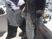 Bite Me Sportfishing Charters, Back on the water today, dolphin and a fat wahoo