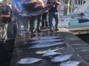 Bite Me Sportfishing Charters, Meatslam and a Sailfish!