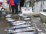 Bite Me Sportfishing Charters, Wahoo, tuna, Kings