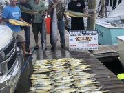 Bite Me Sportfishing Charters, Wahoos and Dolphins!