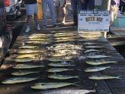 Bite Me Sportfishing Charters, Batchelor Party