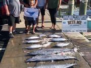 Bite Me Sportfishing Charters, Tuna Dolphin Wahoo Sailfish