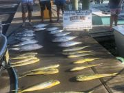 Bite Me Sportfishing Charters, What a Day!