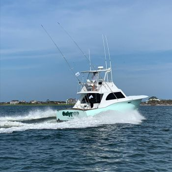 Calypso Sportfishing Charters, The Season is Coming