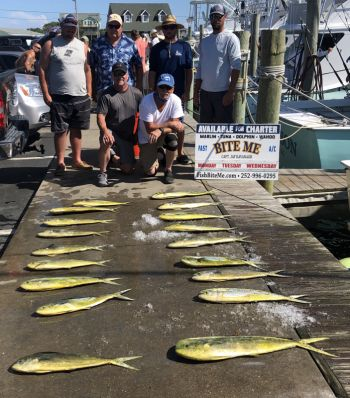 Bite Me Sportfishing Charters, Pretty Day with dolphin!