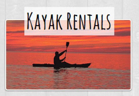 Hatteras Island Boardsports, TAKE A KAYAK CRUISE ON YOUR OWN TIME