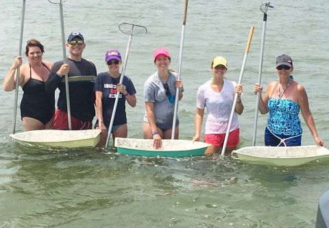 Reliance Hatteras Fishing Charters, Leisurely Clamming Trips