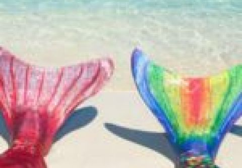 Kitty Hawk Kites, Mermaid School